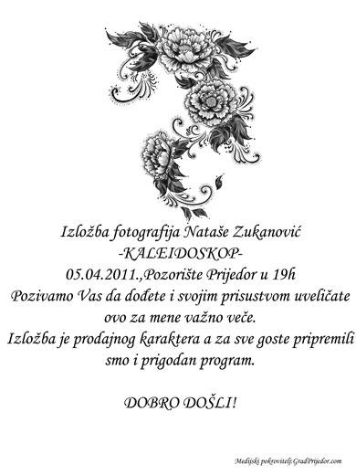plakat-natasa zukanovic
