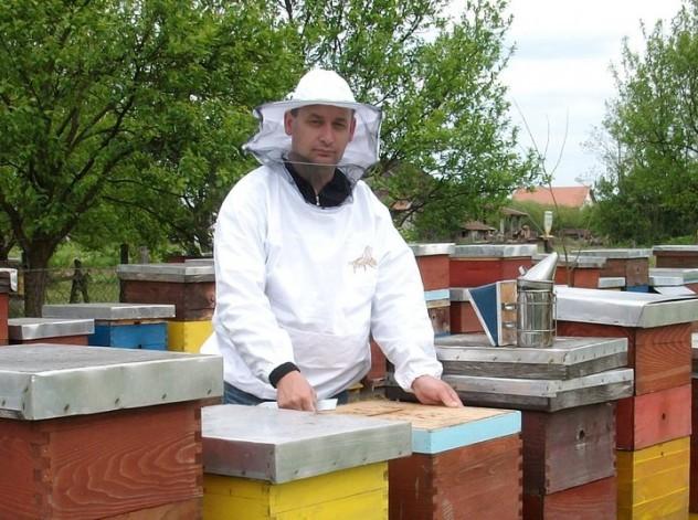 Pčelar Rajko Radivojac