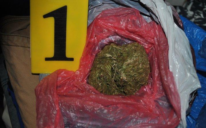 5645c3ad-4094-44ce-8d60-62840a0a0a64-marihuana-718x446