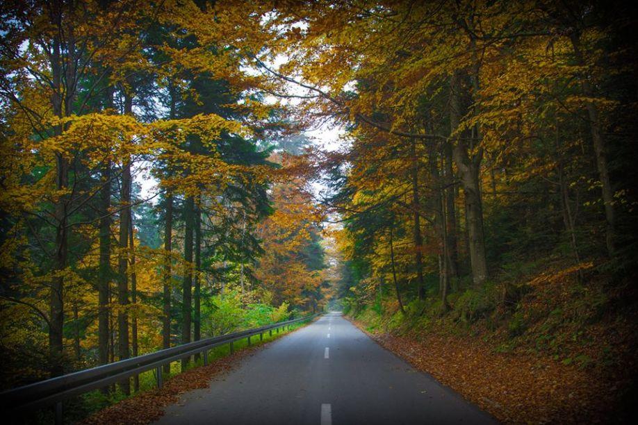 Jesen na Kozari