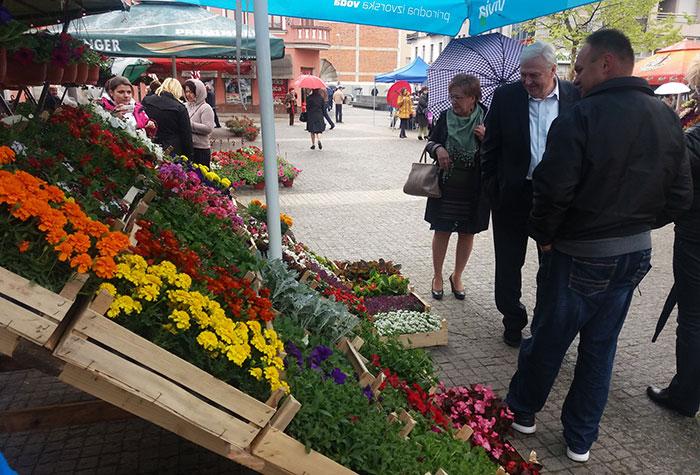 Prijedor-Dani-cvijeca-na-malom-gradskom-trgu