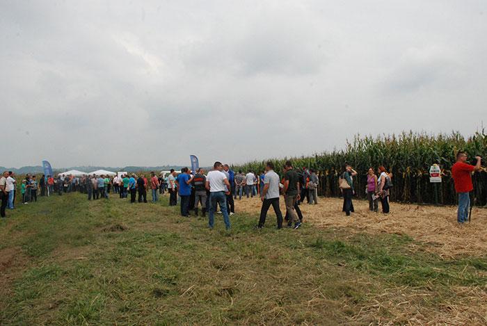 Farma Škundrić u Ništavcima