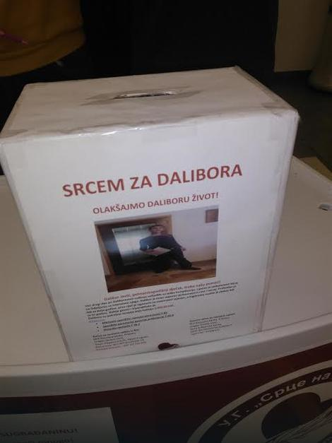 dalibor2